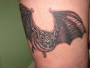 Photos tatouages pictures tattoos 61 Mania tattoo.com Tattoo chauve souris bat